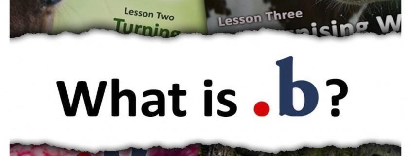 What-is-dotb-2012 (1) copy